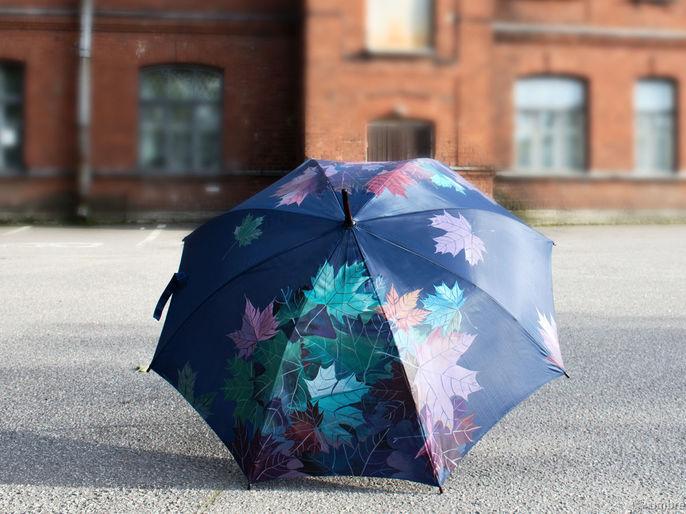 Ручная работа . Umbrella Fine Art зонты с росписью. Handmade.