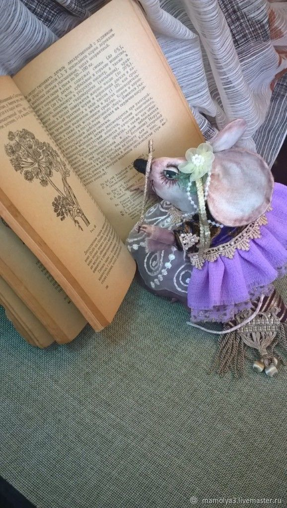 Мышка Сонечка. Придворная знахарка . Просто красавица, Куклы и пупсы, Валуйки,  Фото №1
