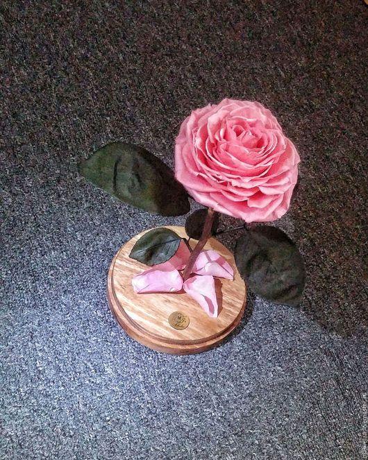 Цветы ручной работы. Ярмарка Мастеров - ручная работа. Купить Роза, которая не увядает от трех до пяти лет. Handmade. Розовый