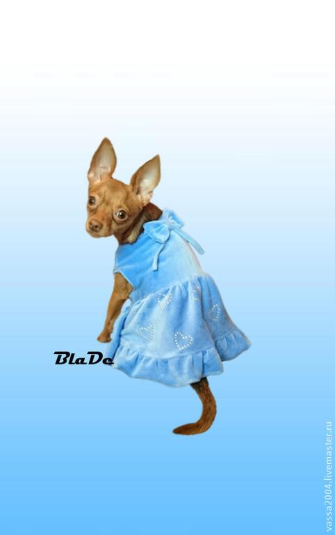 """Одежда для собак, ручной работы. Ярмарка Мастеров - ручная работа. Купить Платье """"Сердечки """". Handmade. Голубой"""
