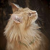 Для домашних животных, handmade. Livemaster - original item decoration for pet (luxury cat collar in green). Handmade.