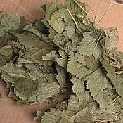 Материалы для творчества handmade. Livemaster - original item Dried flowers: black currant leaf forest. Handmade.
