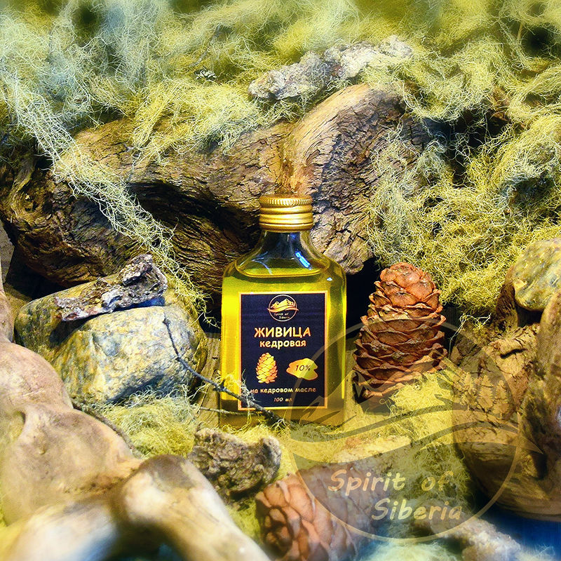 Givitsa of pine 10% on pine nut oil of a cold extraction, Oil, Charyshsky,  Фото №1