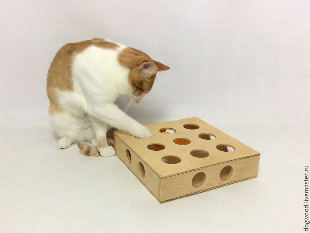 Игрушка коробка для кота своими руками 26