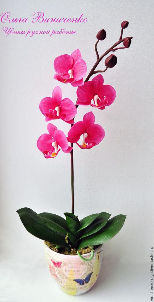 Интерьерные композиции ручной работы. Ярмарка Мастеров - ручная работа. Купить Орхидея фаленопсис из полимерной глины. Handmade. Орхидея