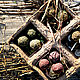 Shamaness. Набор травяных благовоний для арома-лампы, Ритуальная атрибутика, Санкт-Петербург,  Фото №1