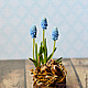 Easter composition with Muscari. Composition. KG_flowers. My Livemaster. Фото №4