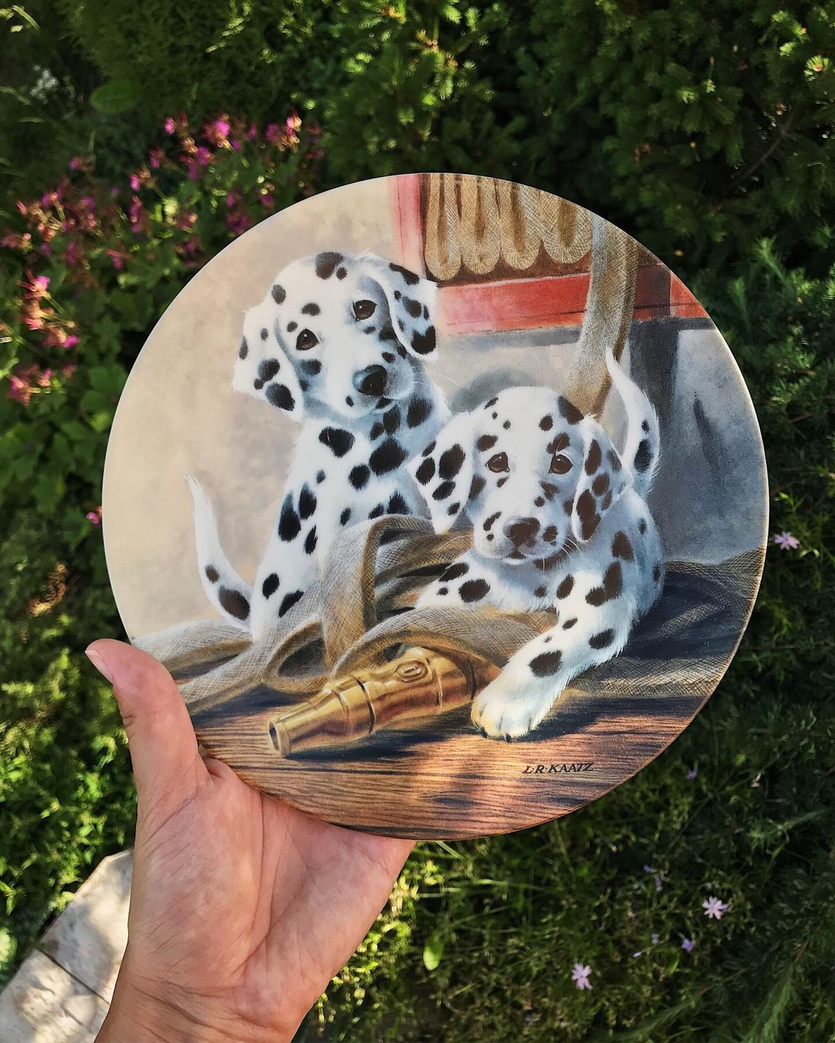 Knowles puppy plate, USA, 1985, Vintage interior, Moscow,  Фото №1