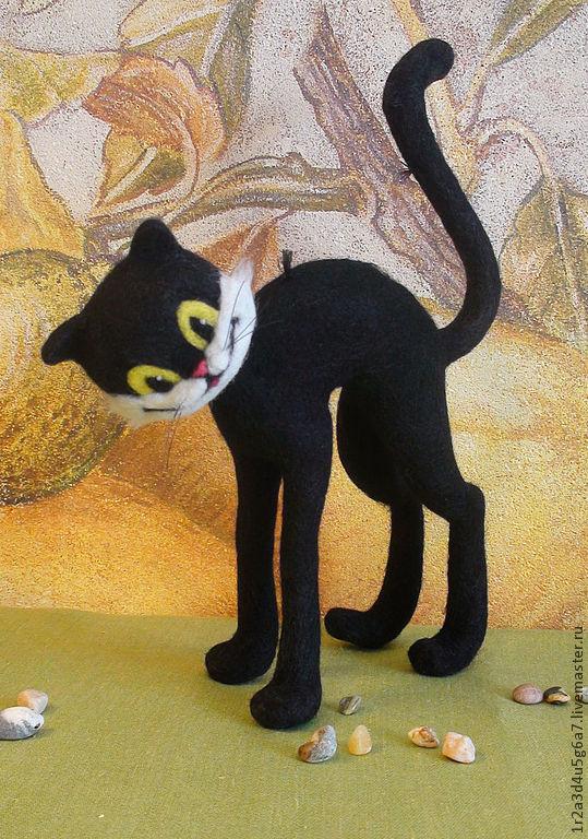 Адреса магазинов черный кот