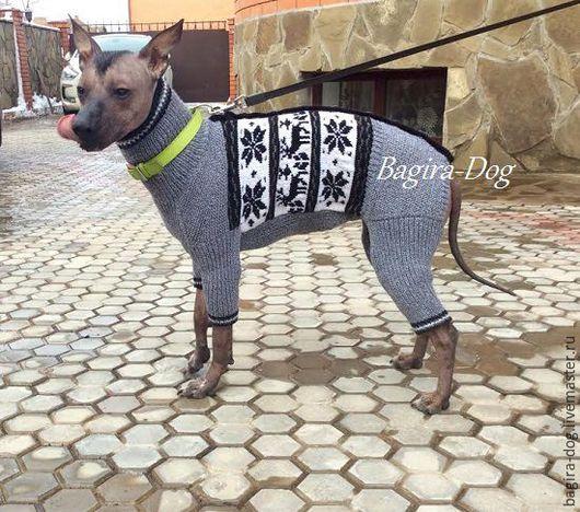 """Одежда для собак, ручной работы. Ярмарка Мастеров - ручная работа. Купить Комбинезон для собак Ксоло и Перуанцев """" Северный олень """". Handmade."""