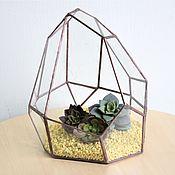 Цветы и флористика handmade. Livemaster - original item The Floriana for plants. Author`s florarium. Handmade.