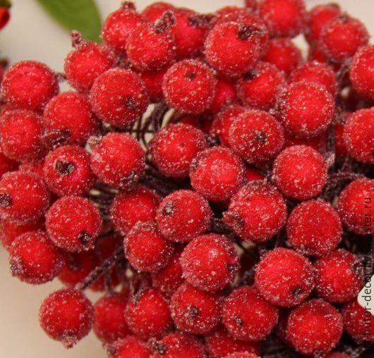 Ягоды в сахаре. Ягодки на проволоке в сахаре. Ягоды в снегу. Красные ягоды в снегу.