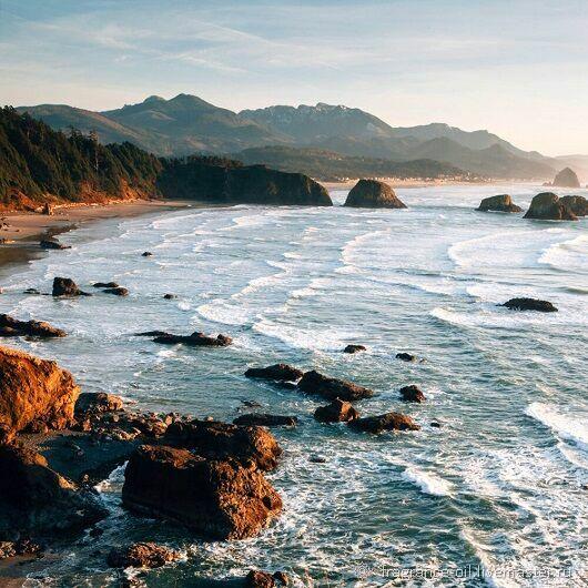 Ocean Shores (Океанический берег), Ароматизаторы, Самара,  Фото №1