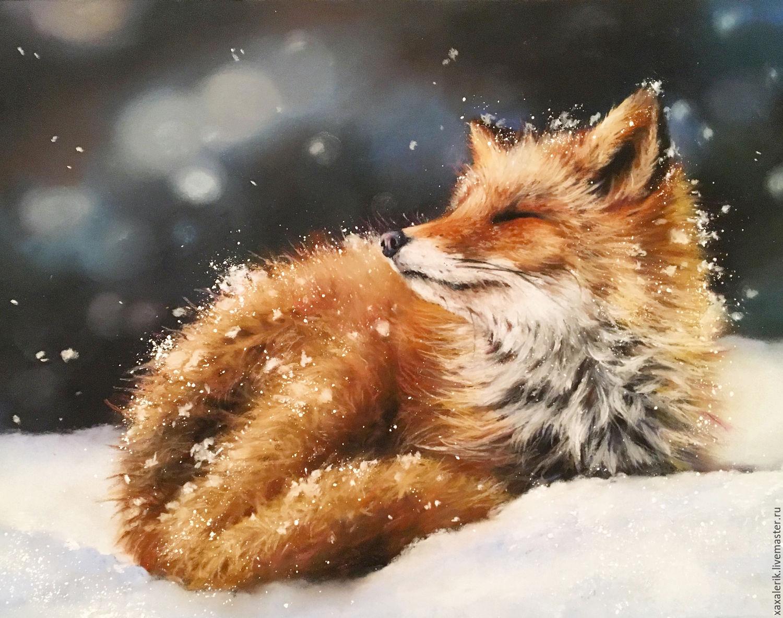 тонкое к чему снится собирать лисички во сне женщине белье термобелье может
