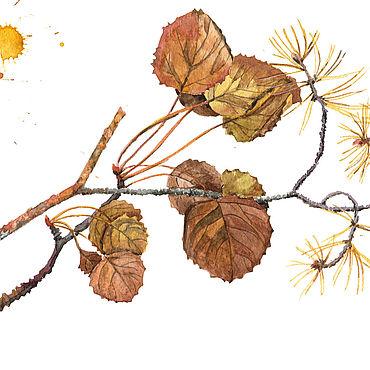 Картины и панно ручной работы. Ярмарка Мастеров - ручная работа Осенняя ветка с засохшии листьями. Handmade.