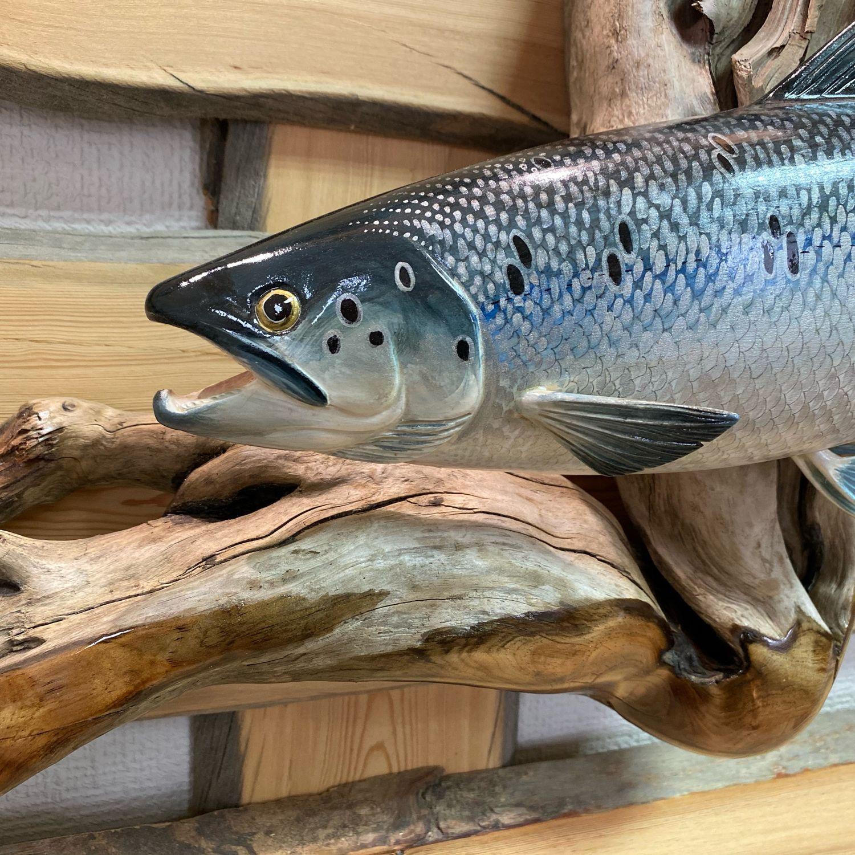 Скульптура рыбы на коряге, Скульптуры, Мурманск,  Фото №1