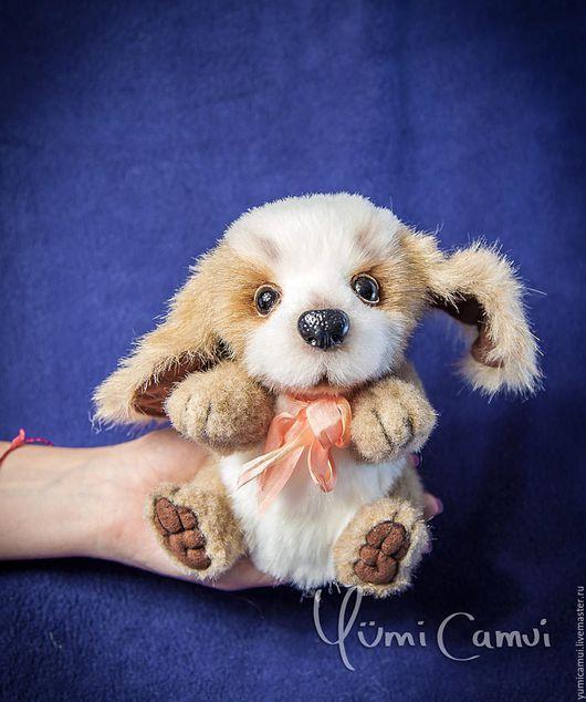 Мишки Тедди ручной работы. Ярмарка Мастеров - ручная работа. Купить Тедди собачка Шарик. Handmade. Комбинированный, друзья тедди