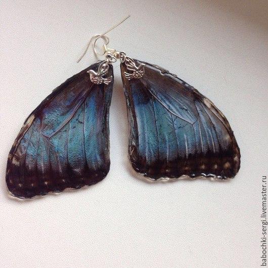 Крылышки бабочки Морфо
