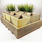 Цветы и флористика handmade. Livemaster - original item A set of pots for herbs. Handmade.