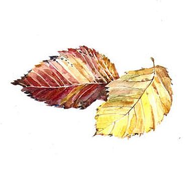 Картины и панно ручной работы. Ярмарка Мастеров - ручная работа Два листика вяза. Handmade.