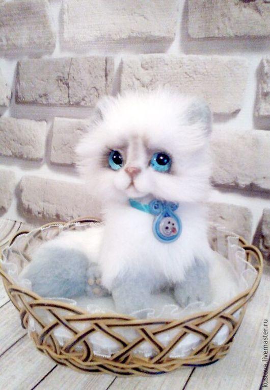 Мишки Тедди ручной работы. Ярмарка Мастеров - ручная работа. Купить котик Лорд. Handmade. Белый, теплый дом, гранулят
