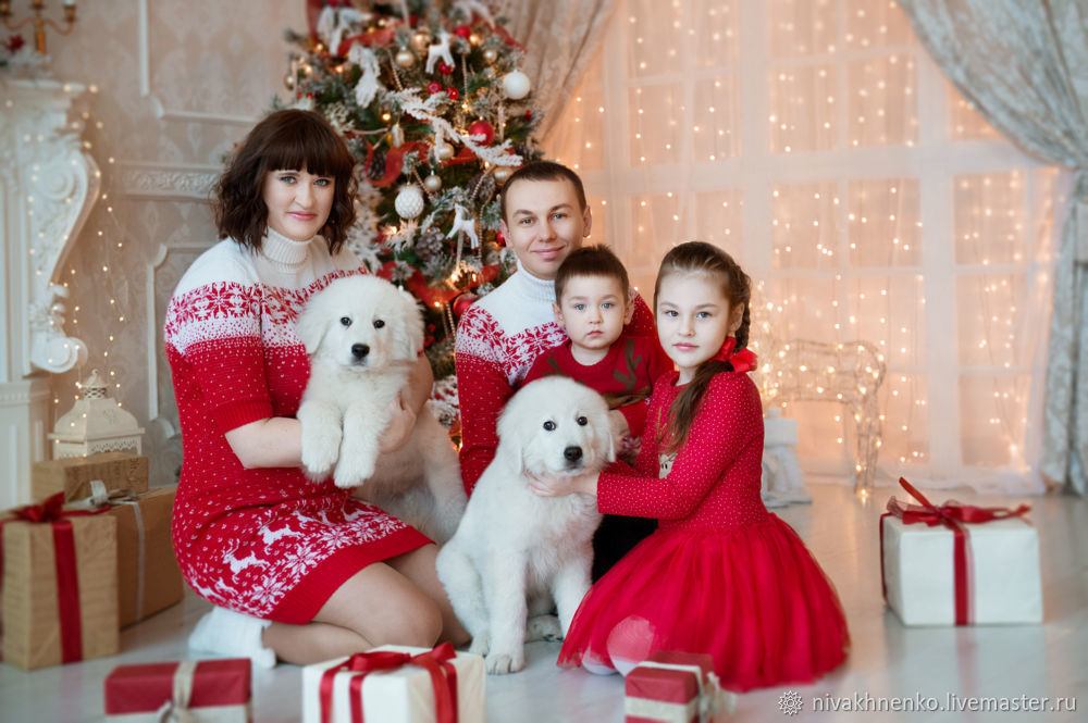 Sweater dress with knitted reindeer Family set, Sweaters, Moscow,  Фото №1
