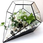 Цветы и флористика handmade. Livemaster - original item The Floriana. Glass interior Floriana with fern and heteroj. Handmade.