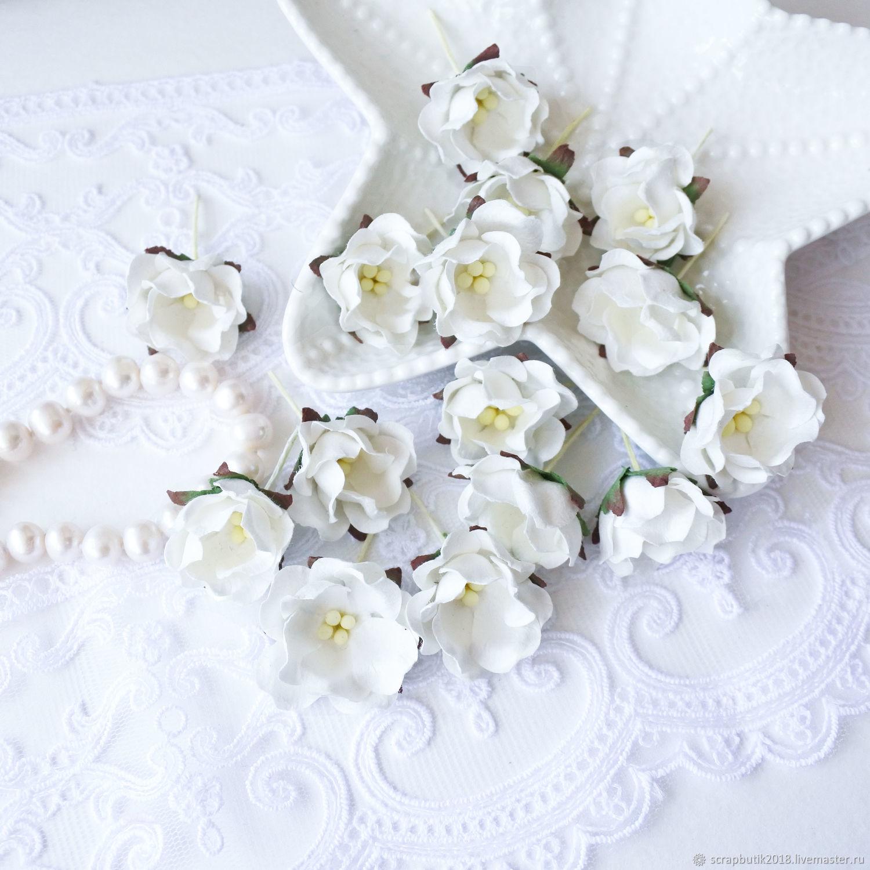 Цветы яблони Белый Бумажные цветы Декор для скрапбукинга, Цветы, Астрахань,  Фото №1