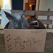 Для домашних животных, handmade. Livemaster - original item Box for cats BOX4CAT without a Mat-couches. Handmade.