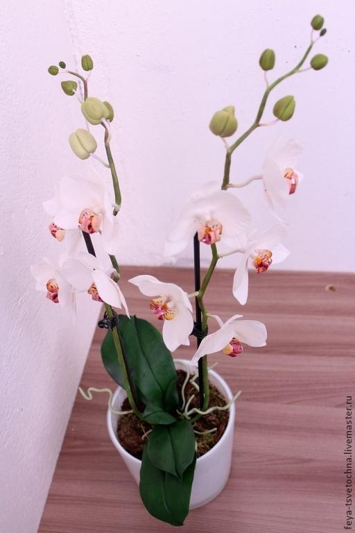 Искусственные растения ручной работы. Ярмарка Мастеров - ручная работа. Купить Орхидея из полимерной глины (холодного фарфора). Handmade. Белый