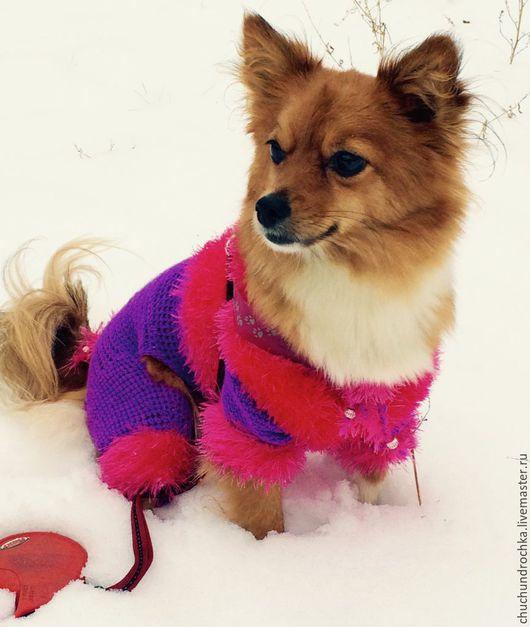 Одежда для собак, ручной работы. Ярмарка Мастеров - ручная работа. Купить Комбинезон Карамелька. Handmade. Фуксия, одежда для собак, чихуа