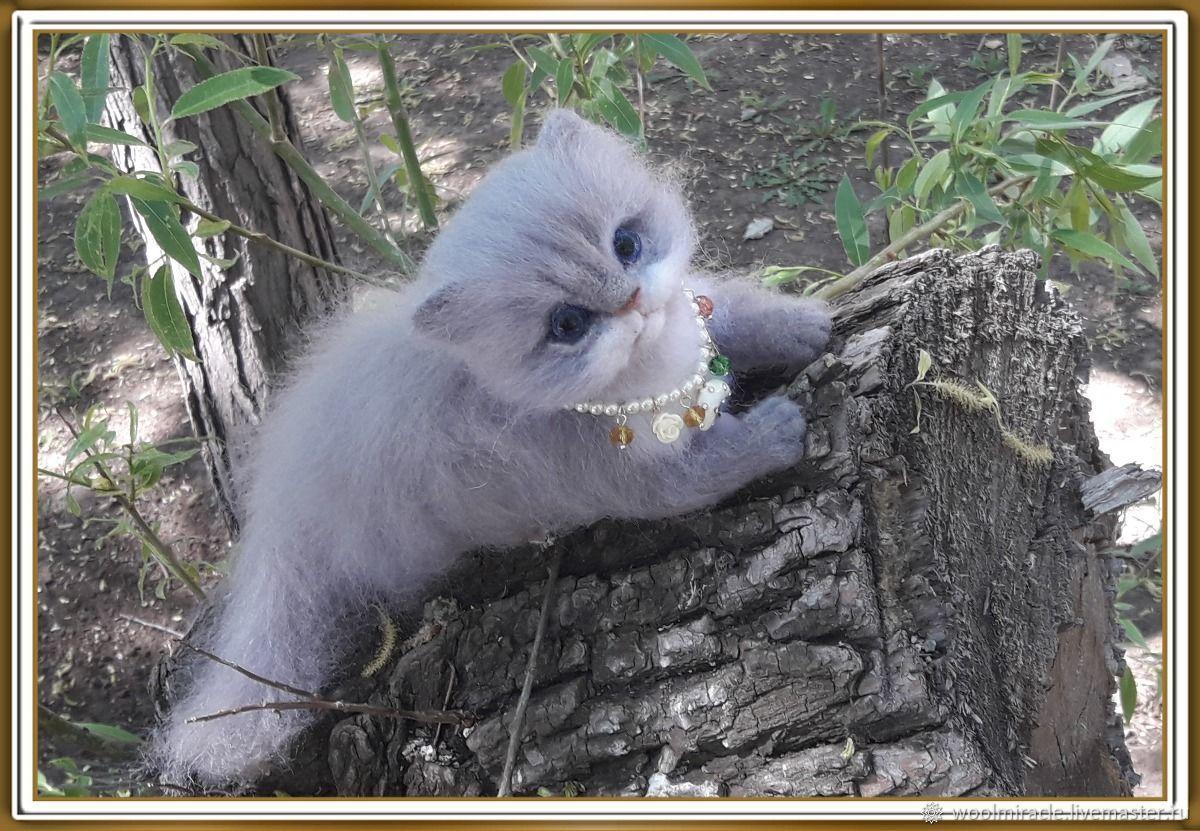 Котенок из шерсти, Войлочная игрушка, Орск,  Фото №1