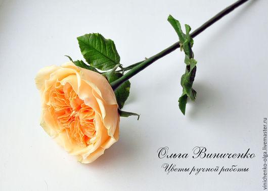 Интерьерные композиции ручной работы. Ярмарка Мастеров - ручная работа. Купить Пионовидная роза Дэвида Остина. Handmade. Оранжевый