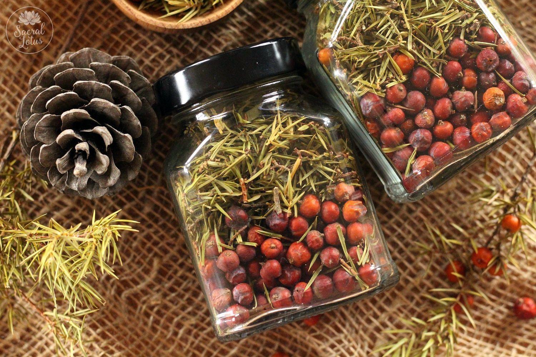 Prickly juniper culinary, Tea and Coffee Sets, Goryachy Klyuch,  Фото №1