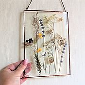 Для дома и интерьера handmade. Livemaster - original item the herbarium in the glass. Herbarium of flowers and herbs in a frame. Lavender. Handmade.