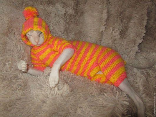 """Одежда для кошек, ручной работы. Ярмарка Мастеров - ручная работа. Купить Комбинезон """"Прелесть"""". Handmade. Комбинированный, одежда для кошек"""