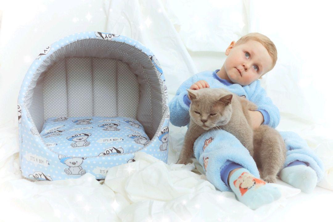 Дом для кота, Домик для питомца, Пятигорск,  Фото №1