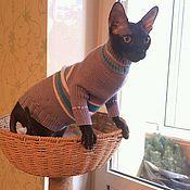 """Одежда для питомцев ручной работы. Ярмарка Мастеров - ручная работа Одежда/свитер для кошек сфинкс """"Классика"""". Handmade."""