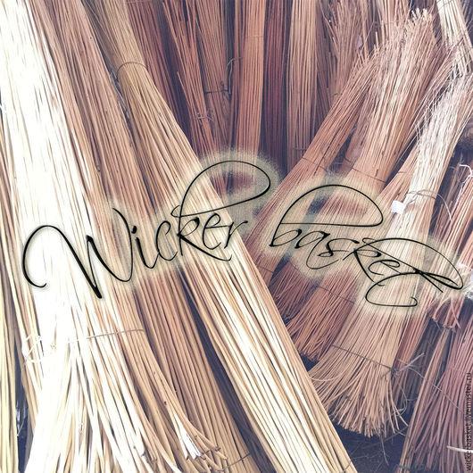 Другие виды рукоделия ручной работы. Ярмарка Мастеров - ручная работа. Купить Прут ивовый (лоза) для плетения 40-60 см., в пучках по 100 шт.. Handmade.