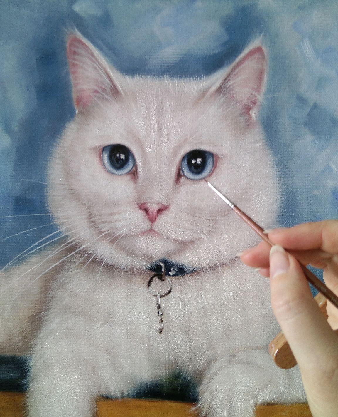 Портрет кошки картинки