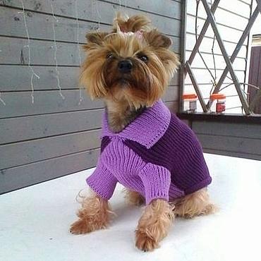 """Для домашних животных, ручной работы. Ярмарка Мастеров - ручная работа Одежда для собак. Свитер """"Итальянский стиль"""". Handmade."""