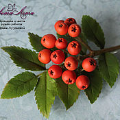 Украшения handmade. Livemaster - original item Brooch with berries of Rowan
