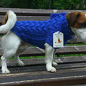 Для домашних животных, ручной работы. Ярмарка Мастеров - ручная работа Кофта вязаная для собак той терьер чихуахуа йоркширский терьер. Handmade.