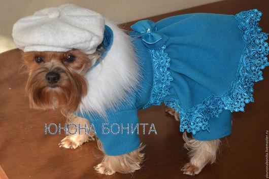 """Одежда для собак, ручной работы. Ярмарка Мастеров - ручная работа. Купить Комбинезон-пальто  """"Ягода Голубая"""". Handmade. Комбинезон для собак"""
