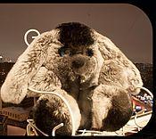 Мягкие игрушки ручной работы. Ярмарка Мастеров - ручная работа Зайка игрушка из натурального меха. Handmade.