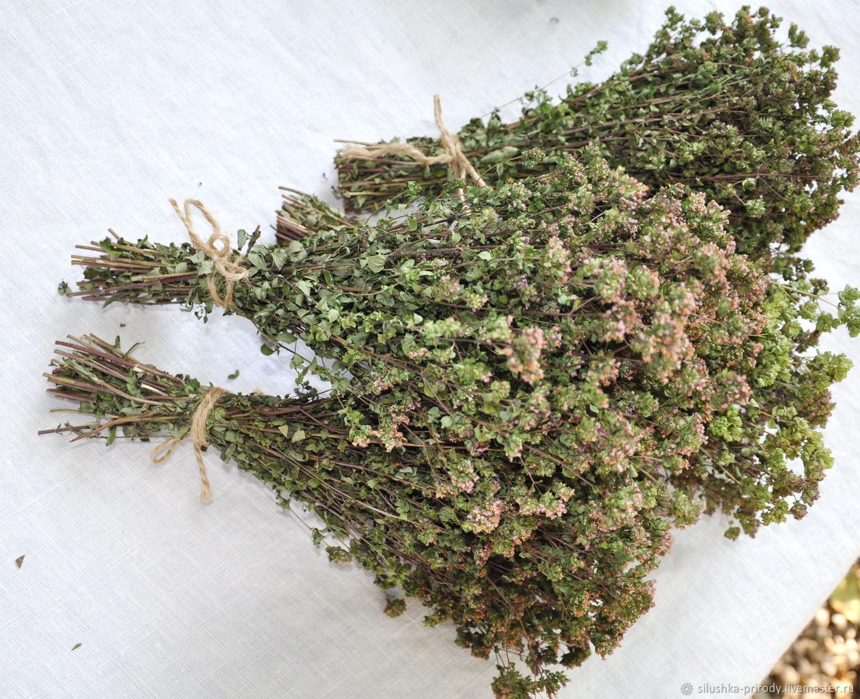 Душица. Орегано. Сухоцвет. Сбор 2020г, Букеты, Апшеронск,  Фото №1