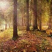 """Картины и панно ручной работы. Ярмарка Мастеров - ручная работа Фотокартина волшебного леса """"Deep forest """", картина в спальню. Handmade."""