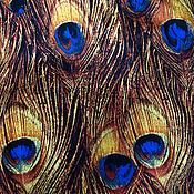 Материалы для творчества handmade. Livemaster - original item Gorgeous bright fabric, cotton peacock Feather. Handmade.
