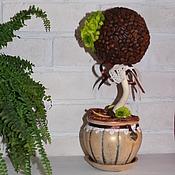 Цветы и флористика ручной работы. Ярмарка Мастеров - ручная работа Кофейное дерево. Handmade.