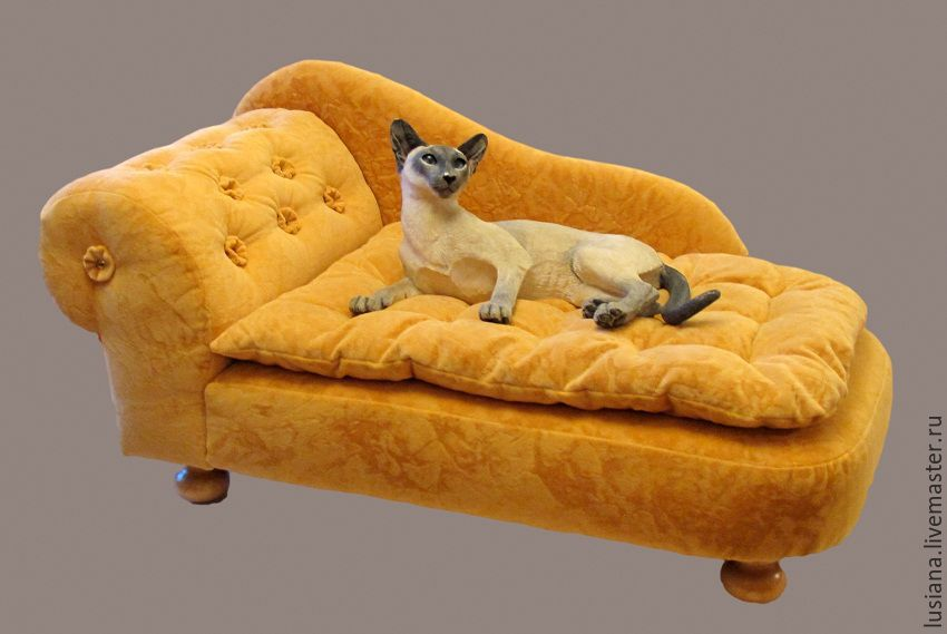 Great Couch For Dogs Or Cats To Buy.